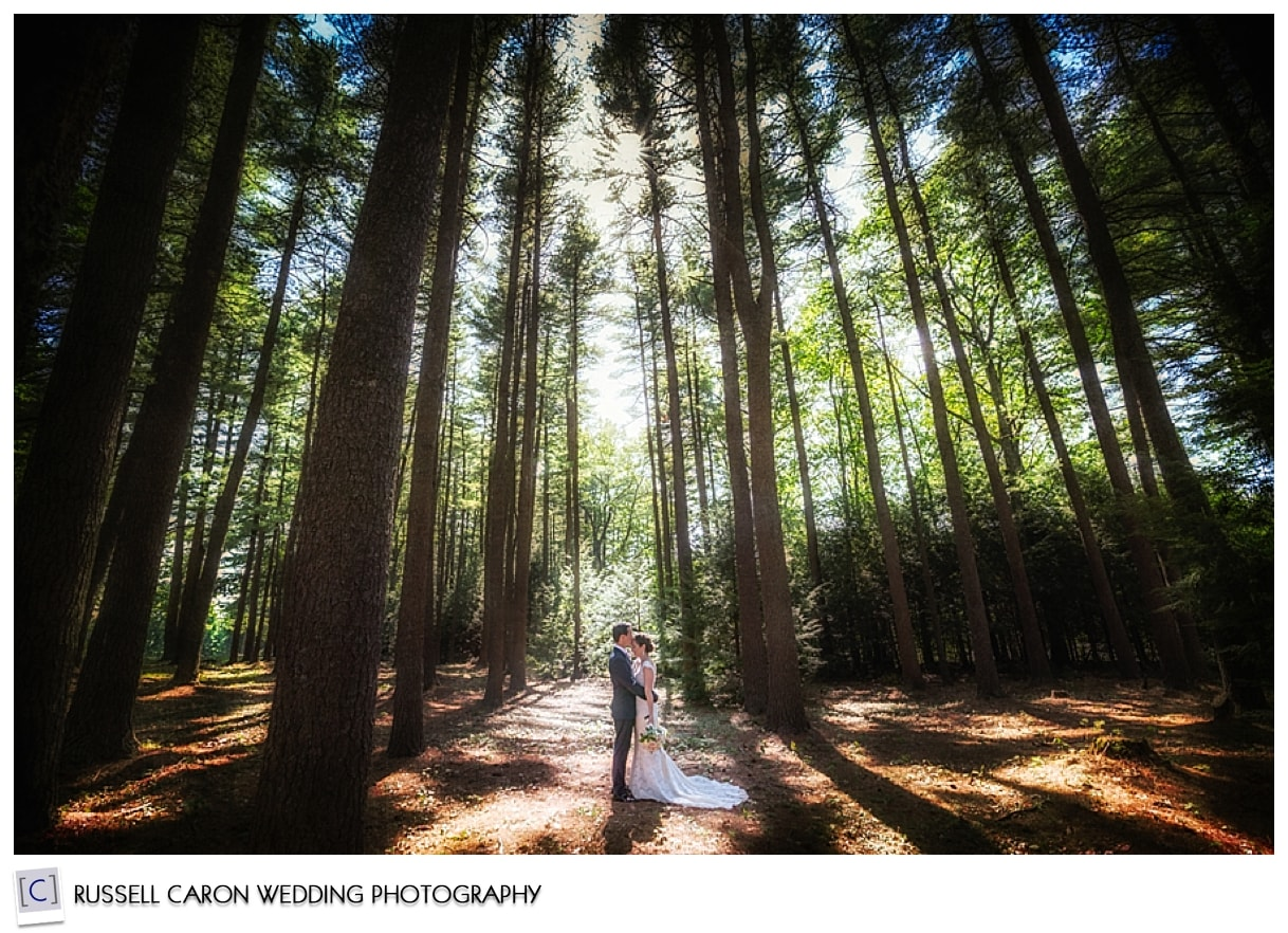 Bride and groom kissing among the trees, #10, 50 best wedding images of 2015