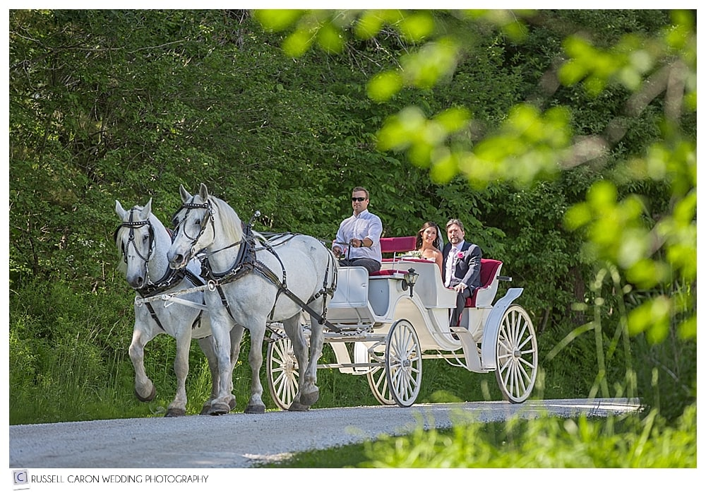 Kendra and her father approach the wedding site in one of the most idyllic wedding photos of the year