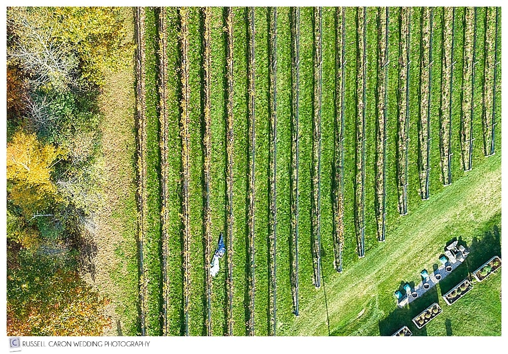 Maine drone wedding photograph of bride and groom in the vineyards at LaBelle Winery Amherst New Hampshire