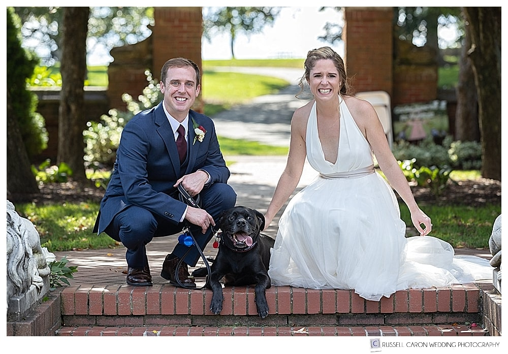 bride and groom with black dog