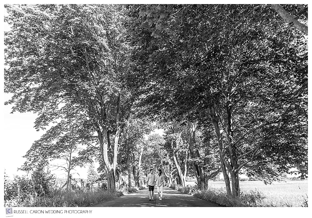 couple walking hand in hand down tree lined street