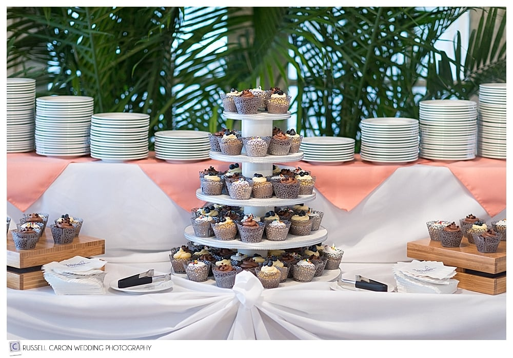 cupcakes at Nonantum wedding
