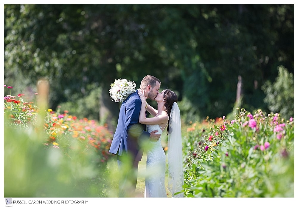 Bride and groom kissing in the flowers at their Parlee Farms wedding