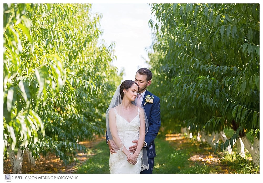 bride and groom among the peach trees at their Parlee Farms wedding