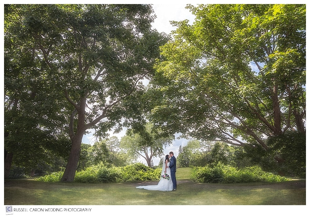 bride and groom amid the trees