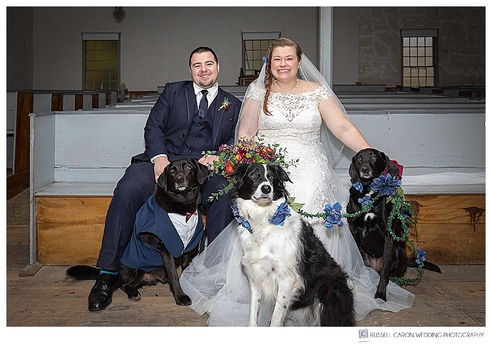 bride and groom with their three dogs in the Elder Grey Meeting House, North Waterboro, Maine
