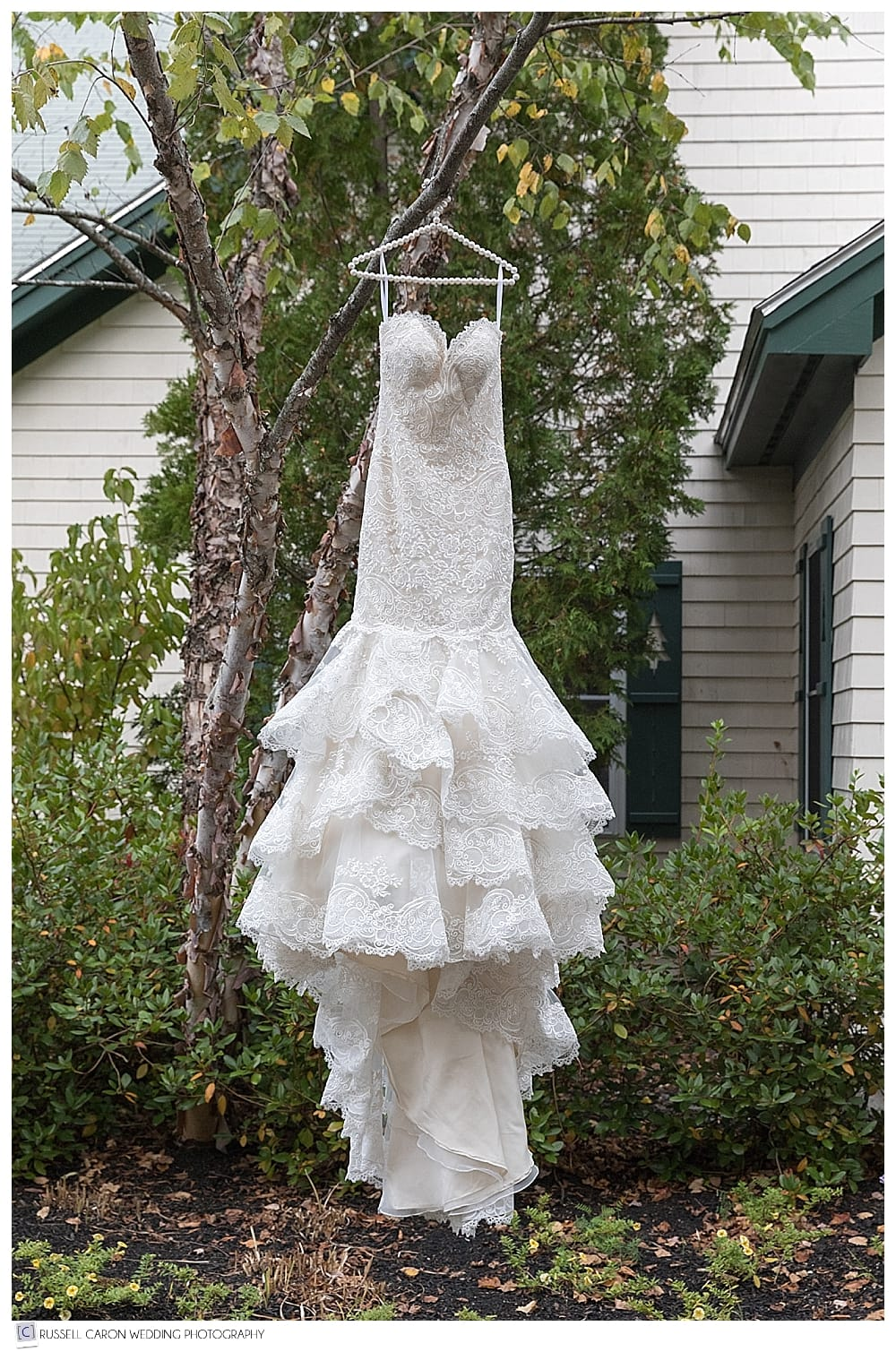 allure bridal gown hanging in a tree