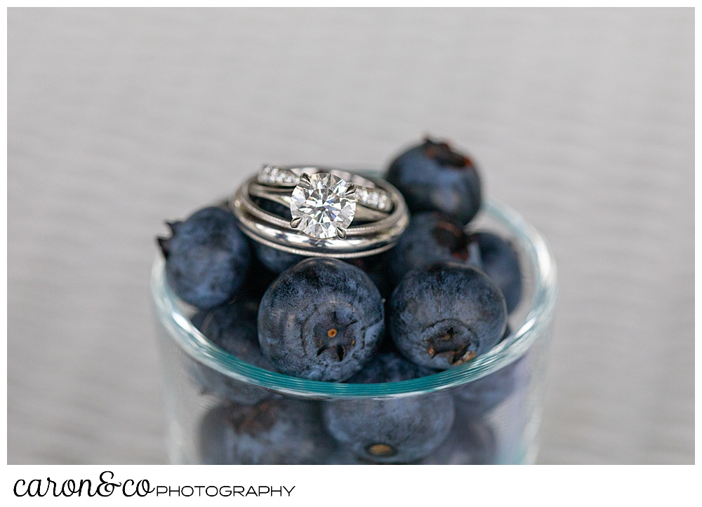 wedding ring detail photo of weddings bands and engagement ring in blueberries