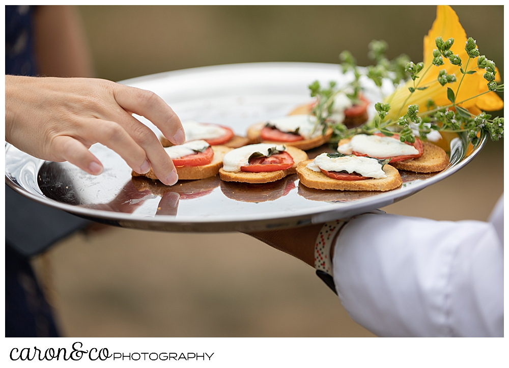 passed hors d'oeuvres at a Grey Havens Inn wedding reception, Georgetown Maine