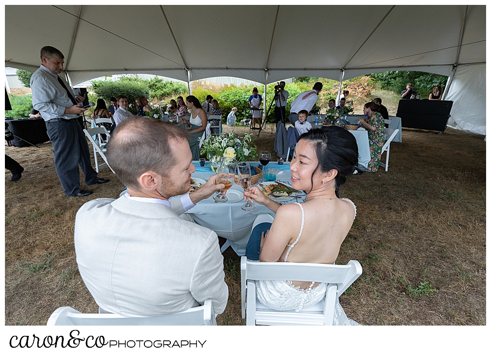 bride and groom toast during their Grey Havens Inn wedding reception, Georgetown Maine