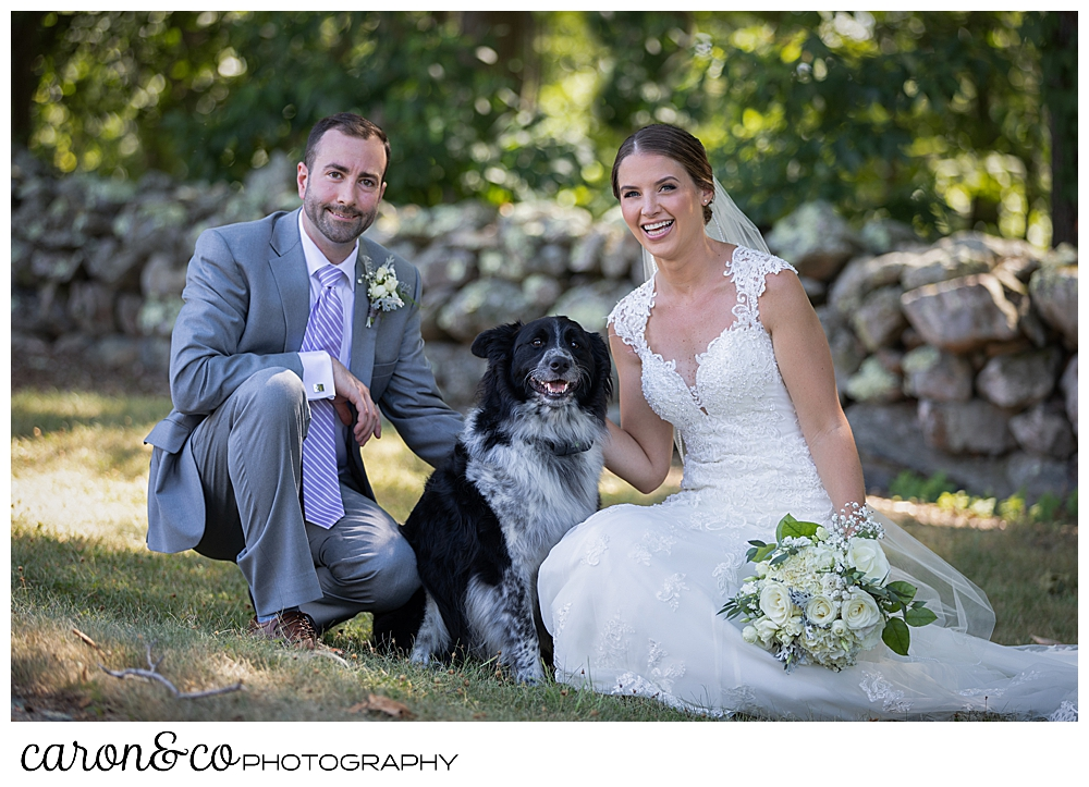 sweet summertime wedding with bride and groom crouching down with their black and white dog