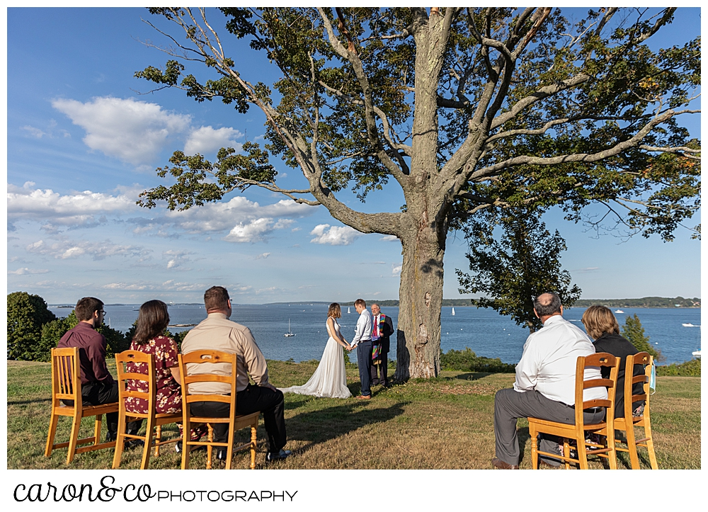 intimate, sweet Portland Maine elopement on the Eastern Promenade near the big tree