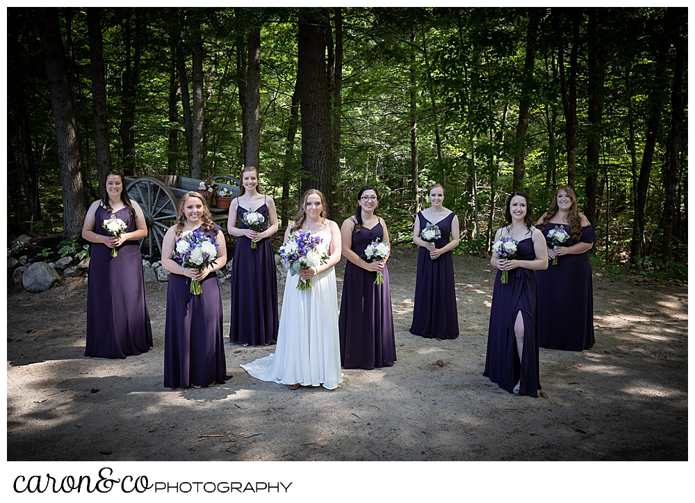 a bride in white, standing with her bridesmaids in dark purple, standing in front of dark trees
