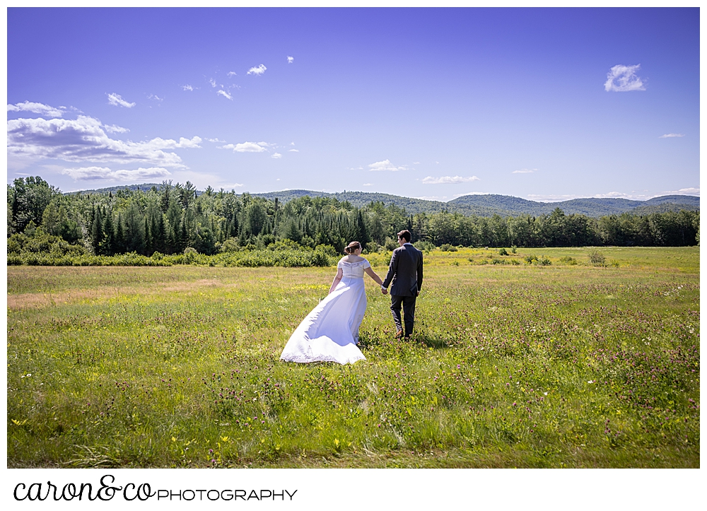 a bride and groom, holding hands, are walking in a field towards the mountains in the background