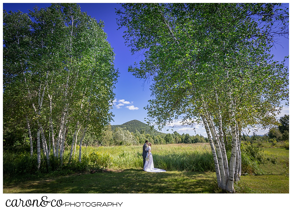 a bride and groom kiss in a stand of birch trees, with a mountain in the background