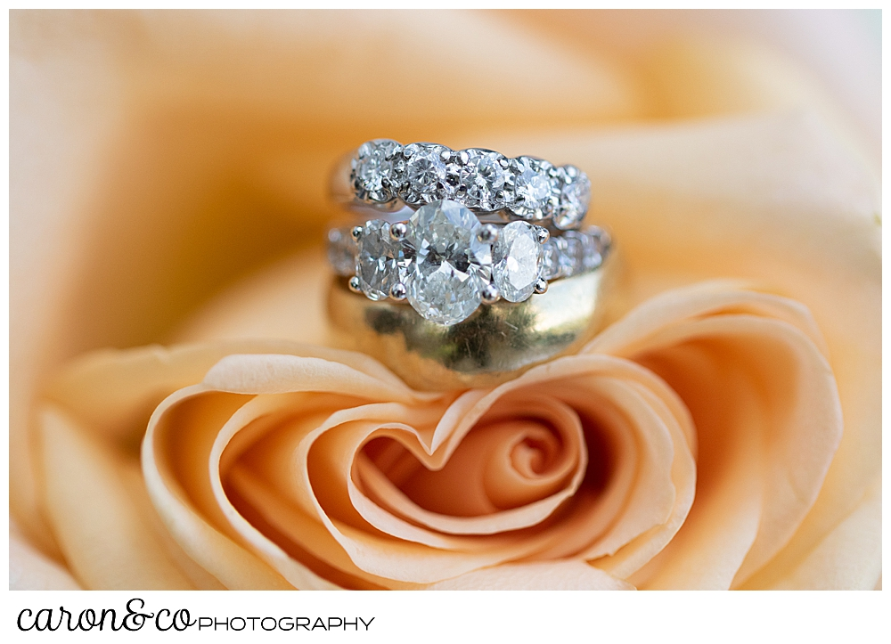 wedding bands and engagement ring detail photo set in a pink rose